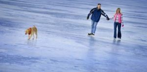 5675496 - couple skating on a frozen lake